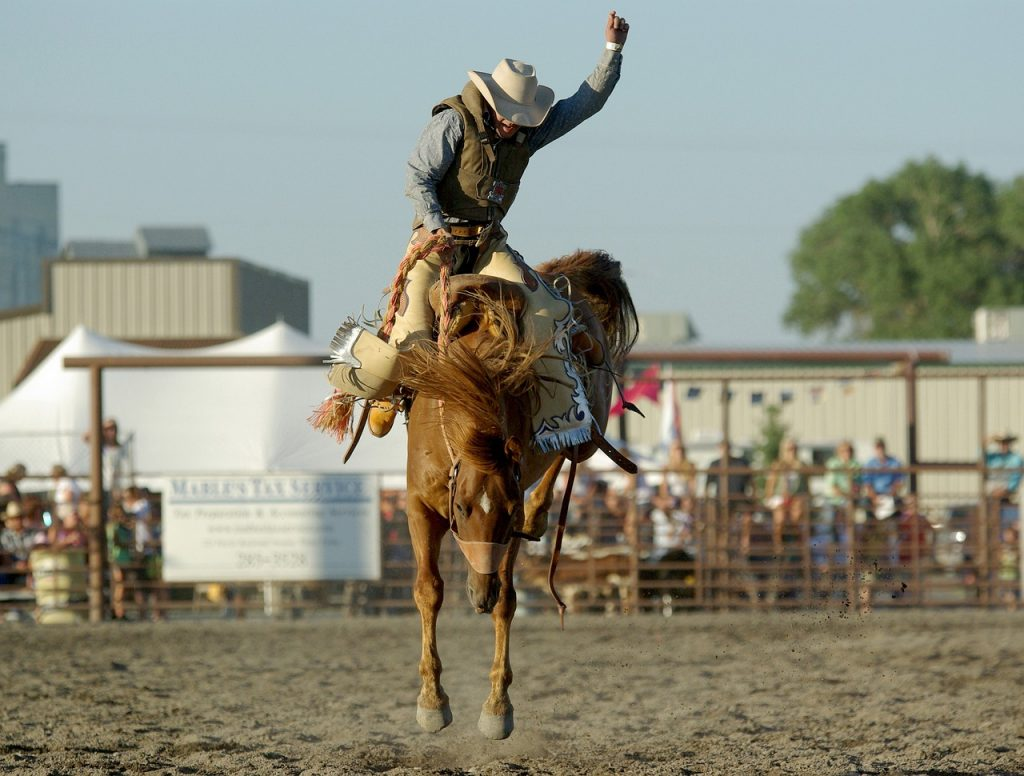 You need to saddle up and master your money like this rodeo cowboy has mastered the art of riding a bucking bronco.