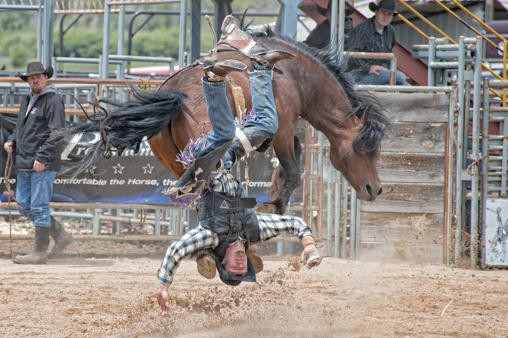 A rodeo cowboy in mid-air after being thrown from a bucking bronco, illustrating failed attempts to master your money in the past.