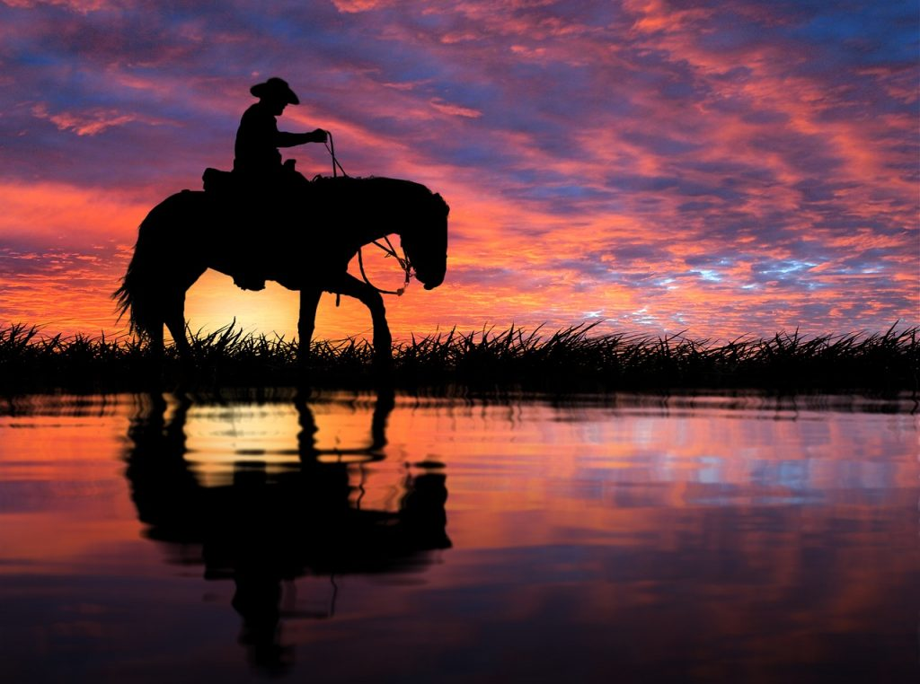 A cowboy riding a horse with a sunset in the background, illustrating how, once mastered, money can help you reach your goals.