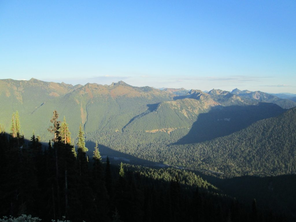 A forested valley in the Southern Cascade Range at sunset.