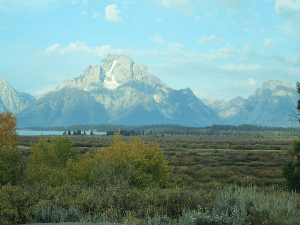 Willow flats of Grand Teton National Park, with the sun-speckled Grand Tetons in the background.