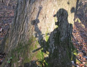 My shadow silhouette on a tree in the fall woods while bowhunting.
