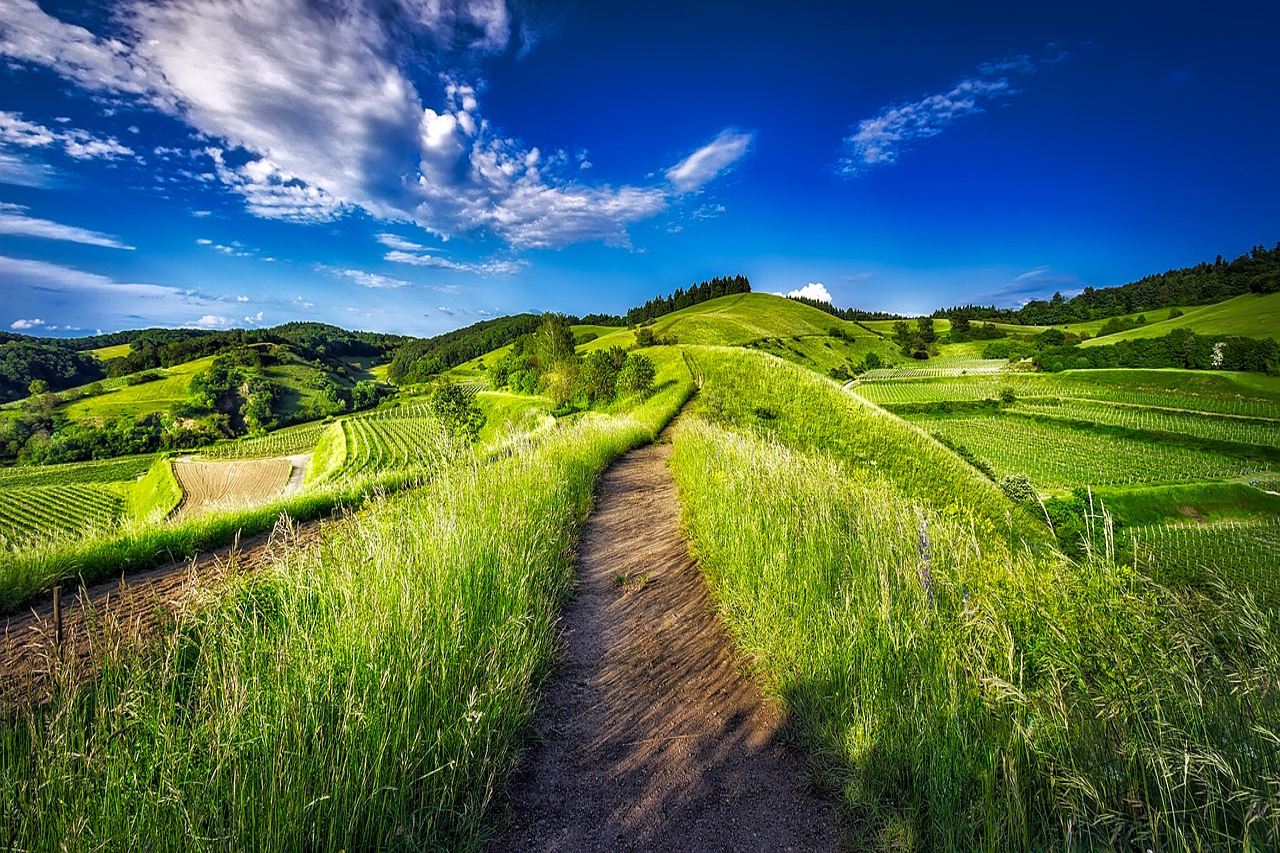 A dirt path winding atop grassy hills, representing the path to financial freedom.